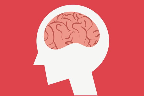 大腦示意圖。 圖/ingimage