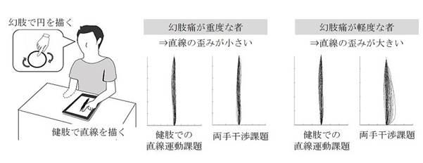 實驗假想圖。(翻攝自東京大學官網)