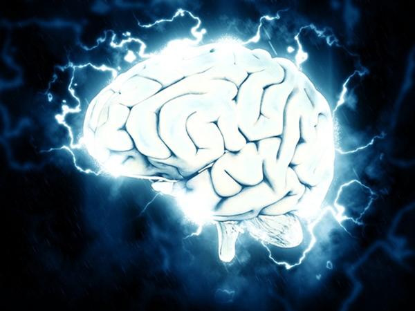 標題: ▲▼大腦示意圖。(圖/翻攝自免費圖庫pixabay)